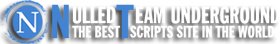 NulledTeam UnderGround | The Best Scripts Site In The World